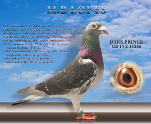 b01_dark-prince-ed1m-2